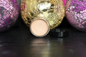 painted earth eyeshadow primer